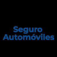 (c) Seguroautomoviles.org